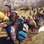 Jireçek: Shqiptarët kanë humbur shumë tokë tek serbët