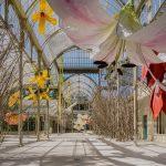 Sot në Madrid ekspozita e artistit nga Kosova Petrit Halilaj